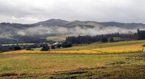 Gecultiveerd gebied stock afbeeldingen