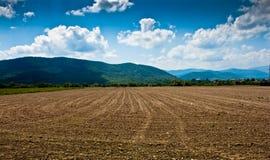 Gecultiveerd land stock fotografie