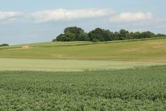 Gecultiveerd land in Frankrijk stock fotografie