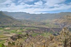 Gecultiveerd landschap, Colca-canion Royalty-vrije Stock Afbeelding