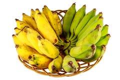 Gecultiveerde banaan in mand Royalty-vrije Stock Foto