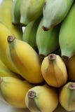 Gecultiveerde bananen of Thaise bananen Stock Afbeelding