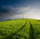Gecultiveerde heuvel bij schemering stock afbeeldingen