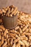 Gedämpfte Erdnüsse in einer Dose. lizenzfreie stockbilder