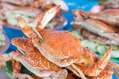 Gedämpfte Krabbe auf der Platte Lizenzfreie Stockbilder