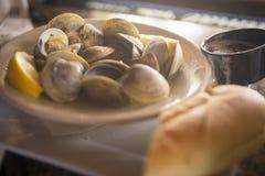 Gedämpfte Muscheln im Weißwein Stockbild