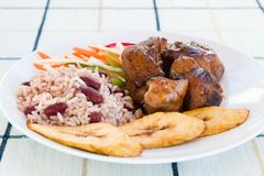 Gedämpftes Huhn mit Reis Lizenzfreies Stockfoto