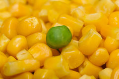 Gedämpftes organisches Gemüse-Medly mit Erbsen, Mais und Bohnen Stockbild