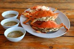 Gedämpftes Rezept der blauen Krabbe Stockfotos