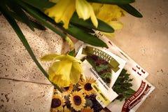 Gedachten van de lente Royalty-vrije Stock Foto's