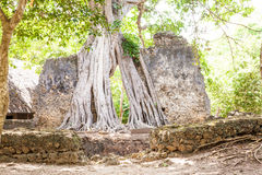 Gede Ruins Stock Photo