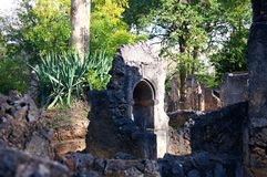 Gede Ruins Kenya Images stock