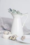Gedeck mit weißer Platte und Krug, grüner Zweig Stockfotografie