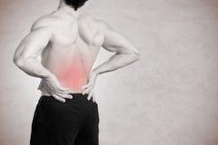 Gedeeltelijk desaturated beeld van gespannen mannelijke rug stock fotografie
