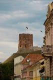 Gedemin wierza w Vilnius, Lithuania Fotografia Stock