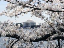 Gedenkteken II van Jefferson stock afbeelding