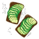 Gedetailleerde avocado vectorsandwich Royalty-vrije Stock Afbeelding