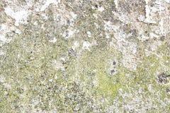 Gedetailleerde dichte omhooggaande oppervlakte van gebarsten en doorstane concrete muren in hoge resolutie stock fotografie