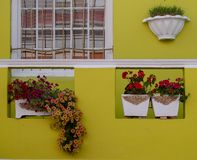 Gedetailleerde foto van huis met bloemen buiten in het Maleisische Kwart, BO Kaap, Cape Town, Zuid-Afrika stock foto's