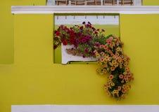Gedetailleerde foto van huis met bloemen buiten in het Maleisische Kwart, BO Kaap, Cape Town, Zuid-Afrika royalty-vrije stock foto