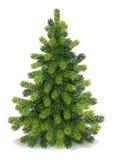 Gedetailleerde Kerstboom Stock Foto