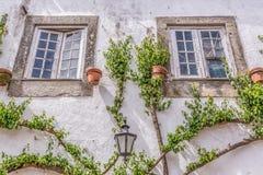 """Gedetailleerde mening van een Portugese lokale voorgevel met kliminstallatie rond vensters, op middeleeuws dorp van """"bidos Ã, in  royalty-vrije stock fotografie"""