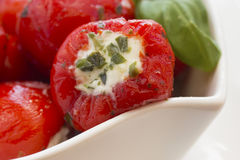Gedetailleerde mening van kruidige ronde Spaanse pepers Stock Foto
