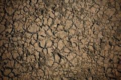 Gedetailleerde textuur: brak droge grondachtergrond Royalty-vrije Stock Foto's