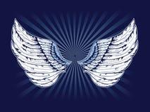 Gedetailleerde Vleugels Stock Afbeelding