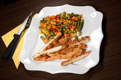 Gediend diner met Mexicaanse salade van groenten Royalty-vrije Stock Afbeelding