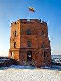 Gediminas Castle Tower In Vilnius Stock Photography