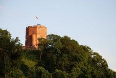 The Gediminas castle in Vilnius, Lithuania Royalty Free Stock Photos