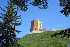 Gediminas` Toren of Kasteel, het resterende deel van het Hogere Kasteel in Vilnius, Litouwen met Litouwse vlag stock afbeeldingen