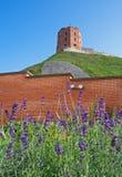Gediminas `-torn eller slott, den resterande delen av övreslotten i Vilnius, Litauen fotografering för bildbyråer