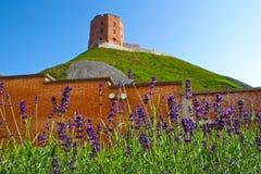 Gediminas `-torn eller slott, den resterande delen av övreslotten i Vilnius, Litauen royaltyfria foton