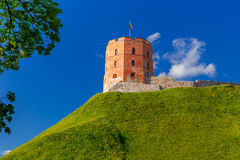 Gediminas Tower in Vilnius, Lithuania. Tower of Gediminas in the summer morning In Vilnius, Lithuania royalty free stock image