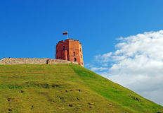 Gediminastoren in Vilnius in de zomer Stock Foto's