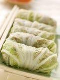 Gedämpfter Schweinefleisch-und Gemüse-Kohl Rolls mit Swee Stockbild