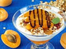 Gedoseerd gelaagd yoghurtdessert stock afbeelding