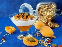Gedoseerd gelaagd yoghurtdessert royalty-vrije stock afbeelding