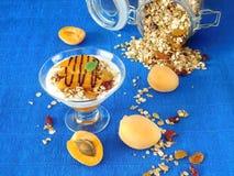 Gedoseerd gelaagd yoghurtdessert stock foto's