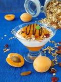 Gedoseerd gelaagd yoghurtdessert royalty-vrije stock fotografie