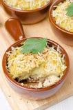Gedoseerde vorm met gebakken kip met fijngestampte bloemkool Stock Afbeelding