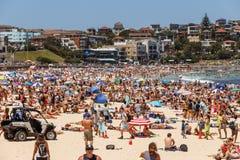 Gedrängter Bondi-Strand stockbild
