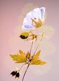 Gedrukt bloem en blad stock afbeelding