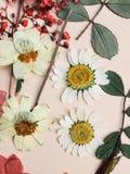 Gedrukte Bloemen stock foto