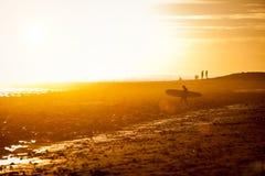 Geduld - zonsondergangsurfer Stock Fotografie
