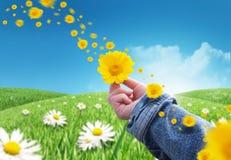 Geef bloemen royalty-vrije stock foto
