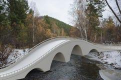 Geef de brug van de illustratiearchitectuur terug Stock Foto's