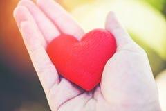 Geef de Liefdemens die klein rood Hart in handen houden voor de dag van liefdevalentijnskaarten stock afbeeldingen